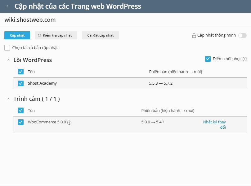 Cập nhật WordPress core, các plugins, themes thủ công.
